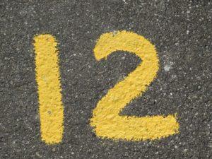Location de Minibus 12 Places Avec Chauffeur - À Quoi Faut-il s'Attendre